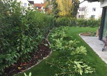 Gartenpflege 9