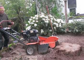 Gartenpflege 6