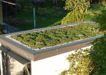 Dachbegrünung & Dachgärten 7
