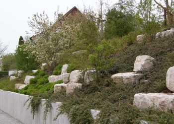 Gartenmauern 55