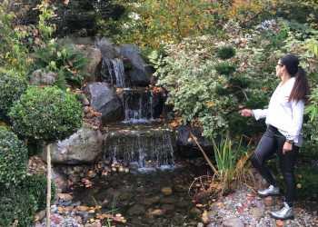 Wasser im Garten 3