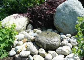 Wasser im Garten 11