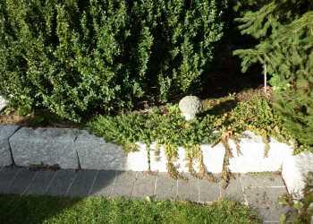 Gartenmauern 39