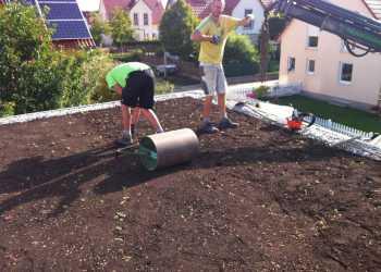 Dachbegrünung & Dachgärten 4