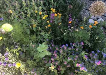 Bienengärten 8