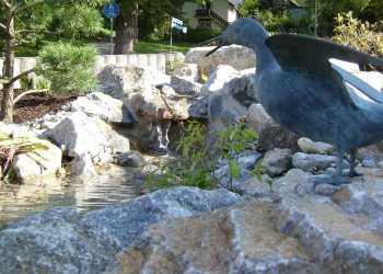 Wasser im Garten 14