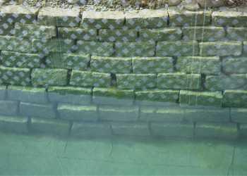 Schwimmteiche 10