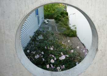 Sichtschutz 15