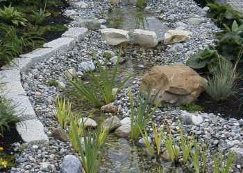 Wasser im Garten 25